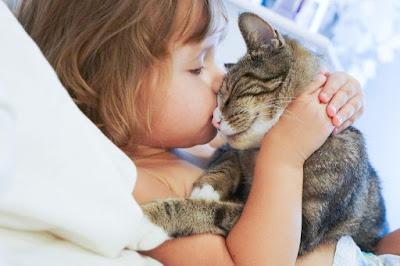 13 Cara Efektif Mencegah Penyebaran Virus Corona (COVID-19) - Hindari Kontak dengan Hewan Yang Berpotensi Menular
