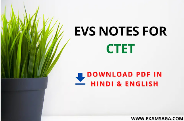 EVS Notes For Ctet