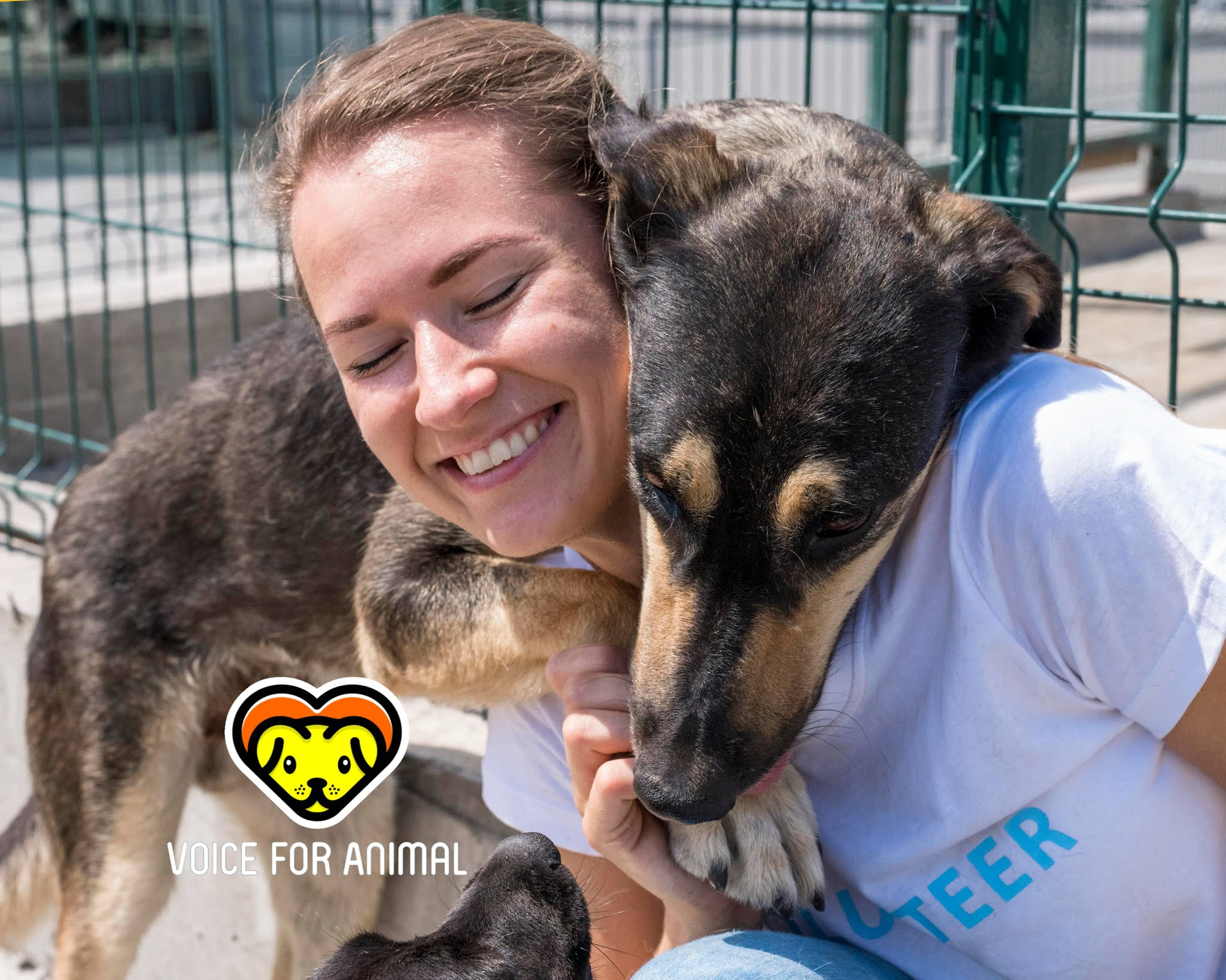 Animal rescue group girl
