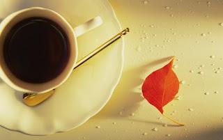 Ödem Attıran Yağ Yakıcı Zayıflatan Çay Tarifi ile ilgili aramalar ödem söktürücü ve yağ yakıcı detoks  yağ yakıcı ödem atıcı çay  yağ yakıcı ödem atıcı çay tarifleri  ödem söktürücü çay kadınlar kulübü  tarçınlı ödem söktürücü çay  ödem attıran çay ibrahim saraçoğlu  yağ yakıcı ödem atıcı detoks  ödem attırıcı içecek