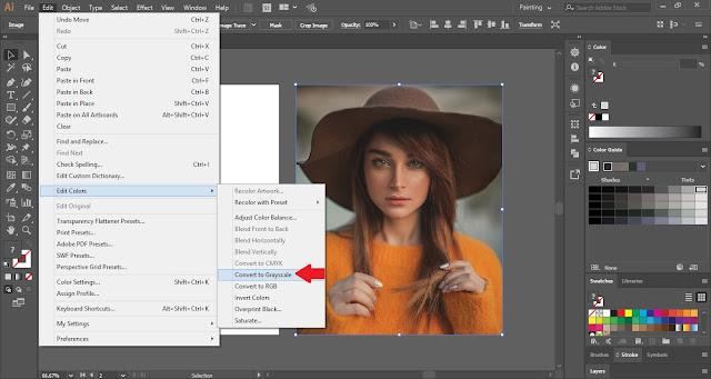 Duotone Effect in Adobe Illustrator