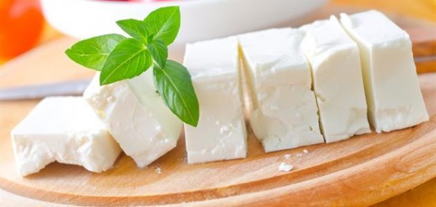 دراسة جدوى فكرة مشروع صناعة الجبنة البيضاء فى مصر 2019