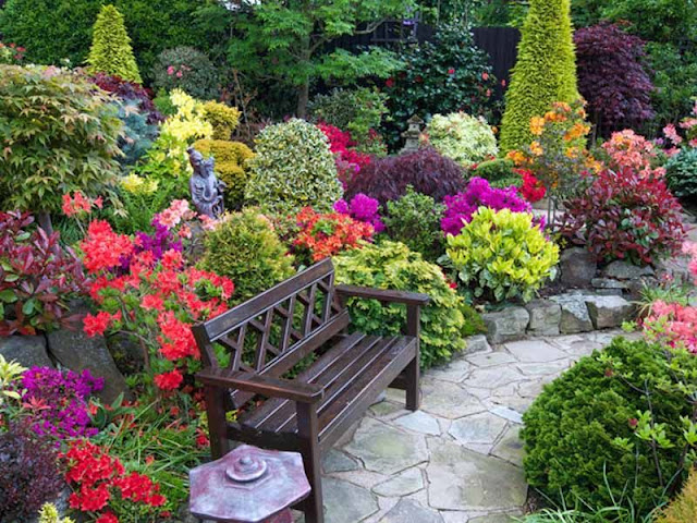 Tips For A Great Garden