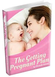 The Getting Pregnant Plan Book Review