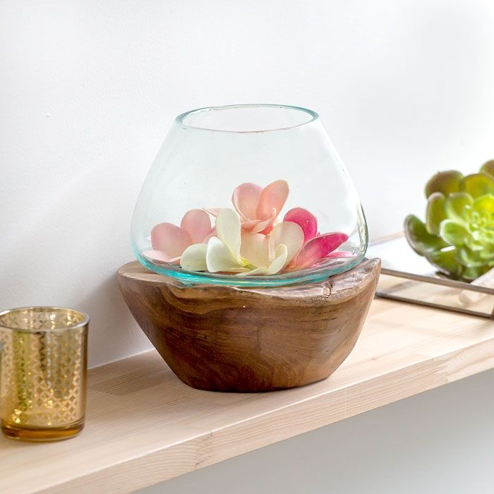 Image Fish Bowl with Plant on Top