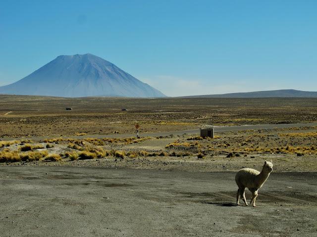 Vale do Colca, perto de Arequipa no Peru