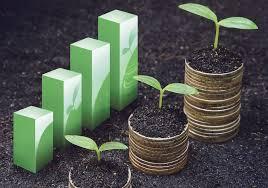 Tarım Ekonomisi nedir