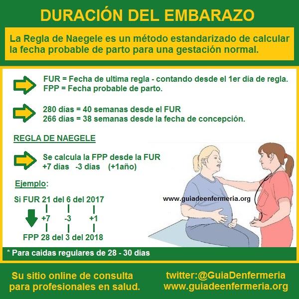 DURACION DEL EMBARAZO EPUB DOWNLOAD