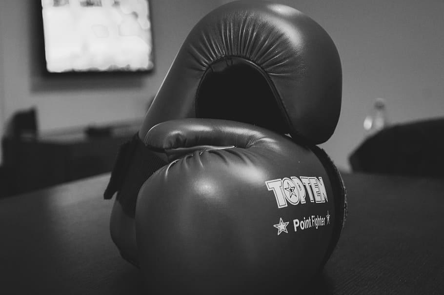 3 Boxers Who Are Social Media Megastars
