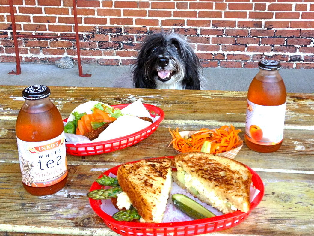 Cosmo Havanese Had A Nice Lunch Out At Star Provisions In Atlanta Today Ok This Wasn T Really His But He Did Get To Enjoy Hanging The