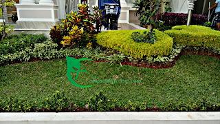 tukang taman , tukang tanaman hias , jasa buat taman
