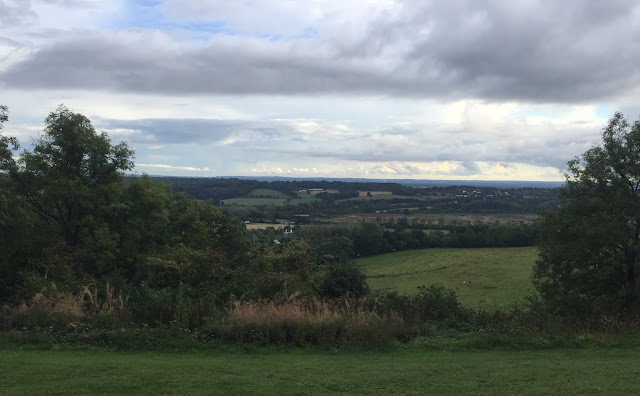 Caterham View