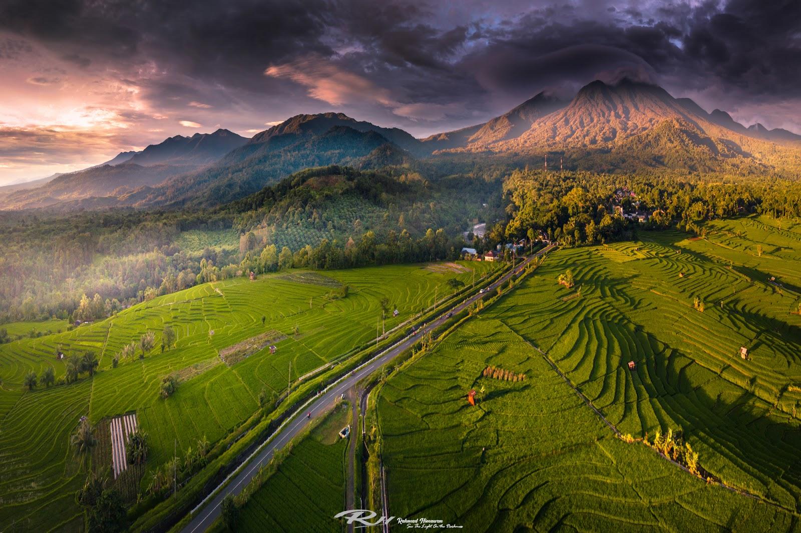 Fotografi Landscape Dengan Tema Sawah Sebagai Background Nya