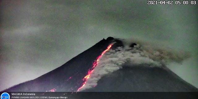 Gunung Merapi Keluarkan Asap Panas, Jarak Luncur Hingga 1.500 Meter