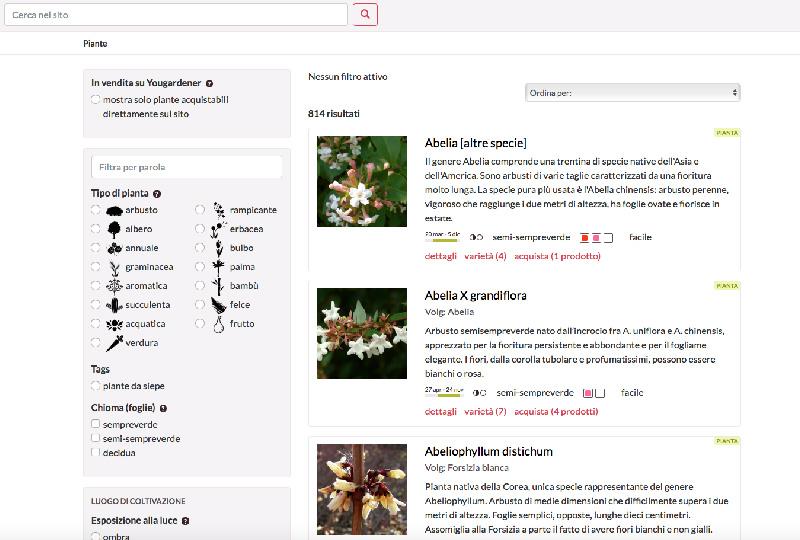 Yougardener: piante e fiori a portata di click