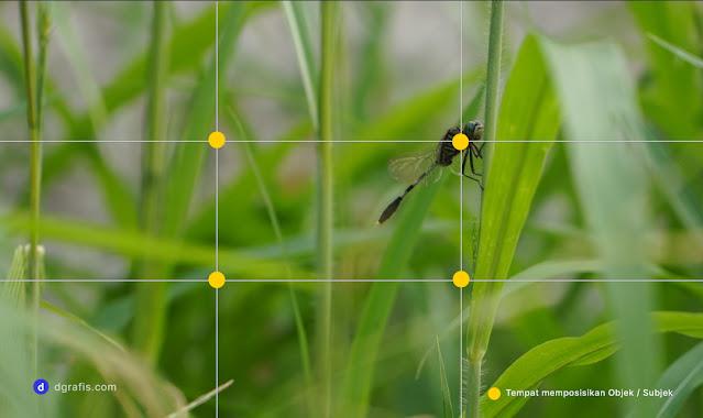 Memahami pengertian rule of thirds dalam fotografi