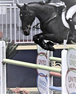 Pure Horse Sense Blog- Tiffany Foster at the Royal Winter Fair 2016
