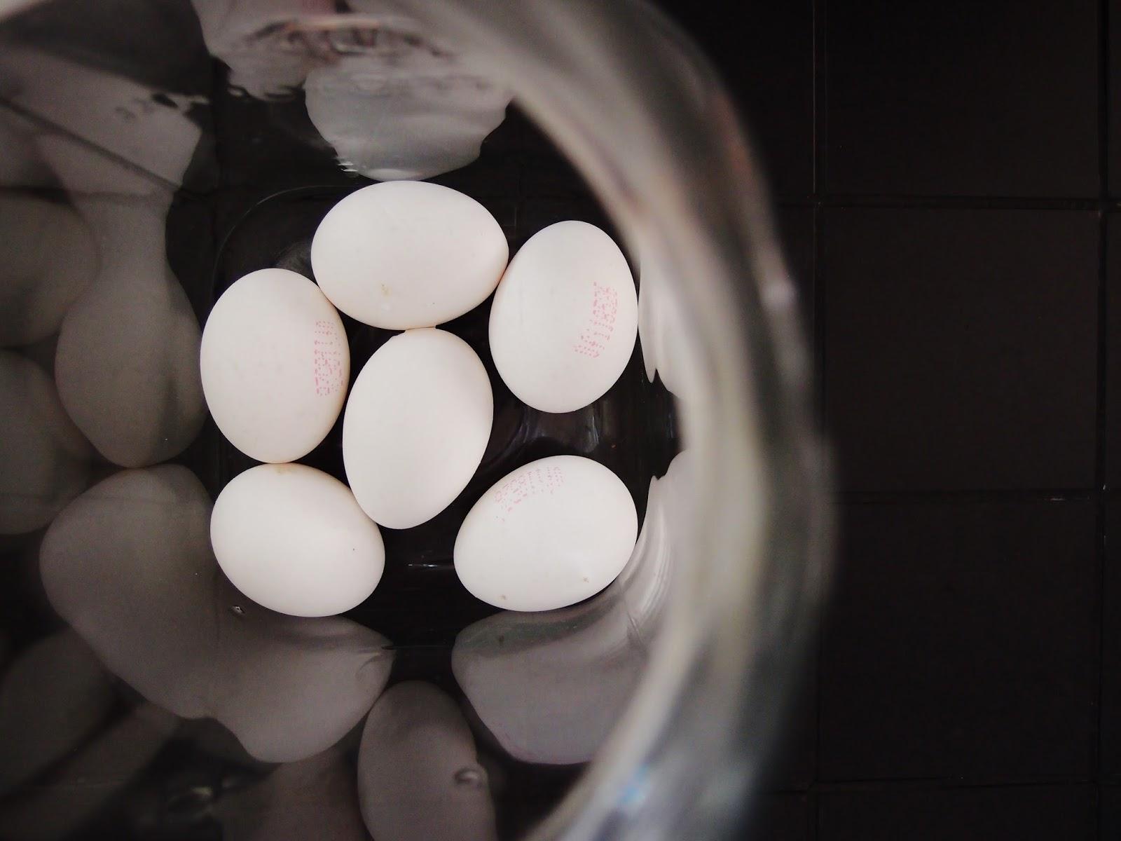 kananmunien säilyttäminen huoneenlämmössä