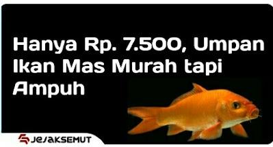 umpan Ikan mas sederhana tapi ampuh