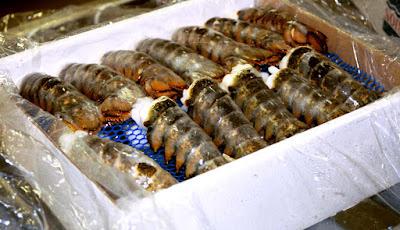 Bulk Frozen Lobster Meat
