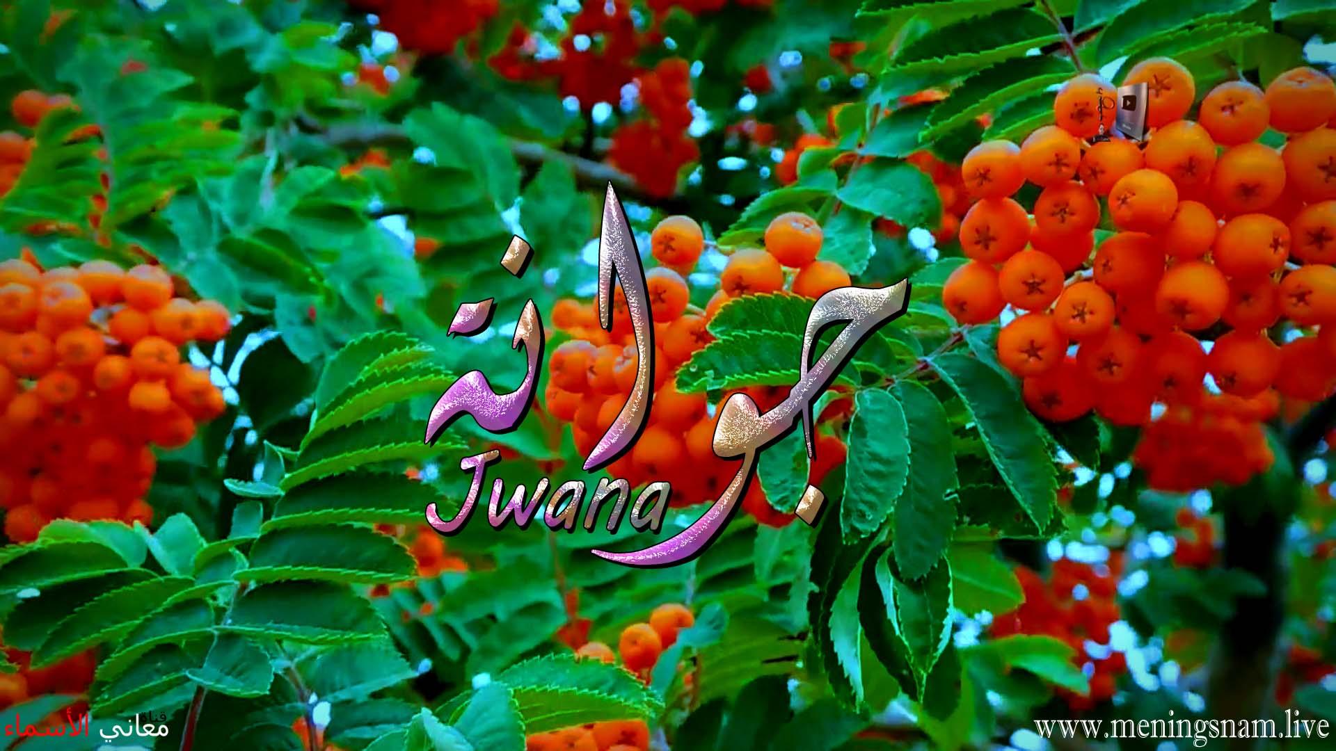 معنى اسم جوانة وصفات حاملة هذا الاسم Jwana