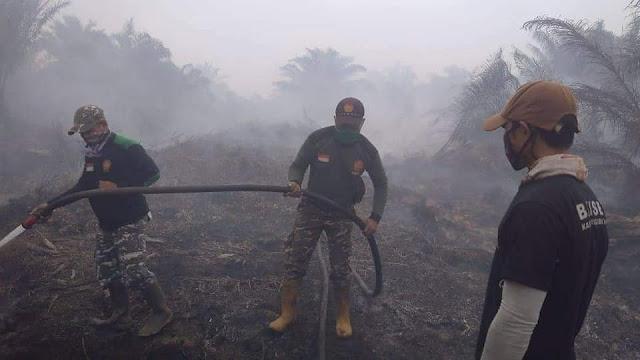 Kalian Hanya Bisa Ghibah, Banser Berjuang Padamkan Api di Kebakaran Hutan Riau