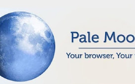 Pale Moon 28.14.2 Offline Installer