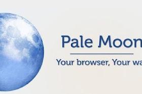 Pale Moon 28.13.0
