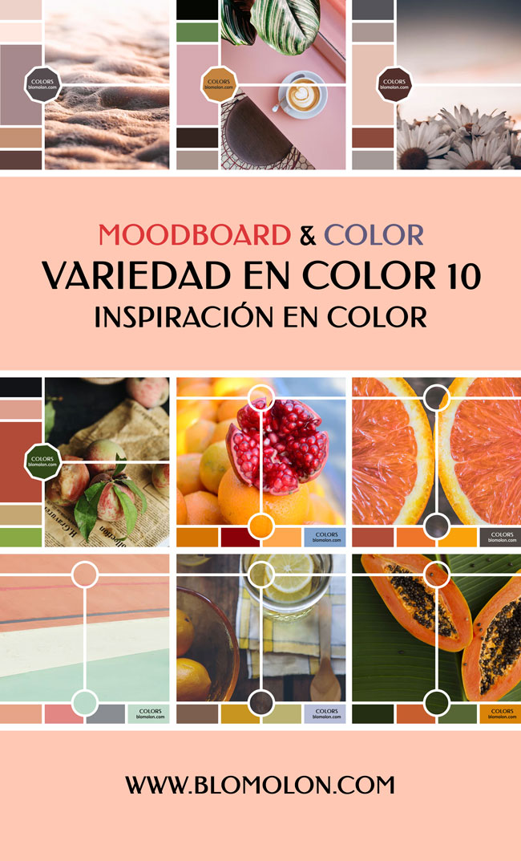variedad_en_color_blomolon_8