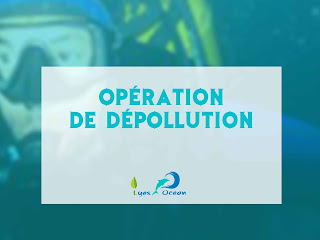 Operation de De-pollution - Cherchell - Algerie 2011