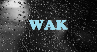What does WAK Mean? - Meaning of WAK