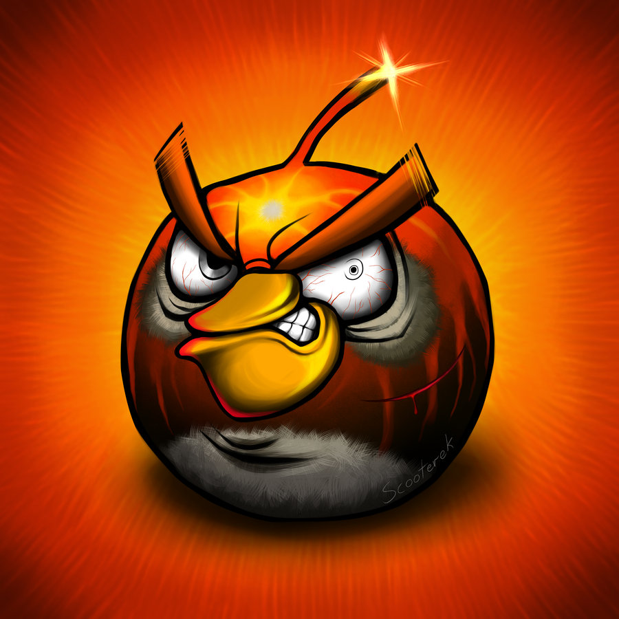 What Angry Birds Look Like After Fighting The Pigs