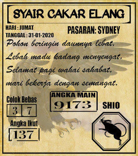 SYAIR SYDNEY 31-01-2020
