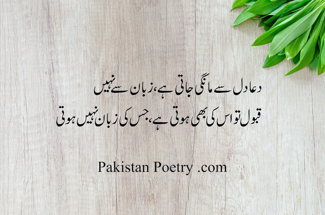 Best Poetry in Urdu of 2020