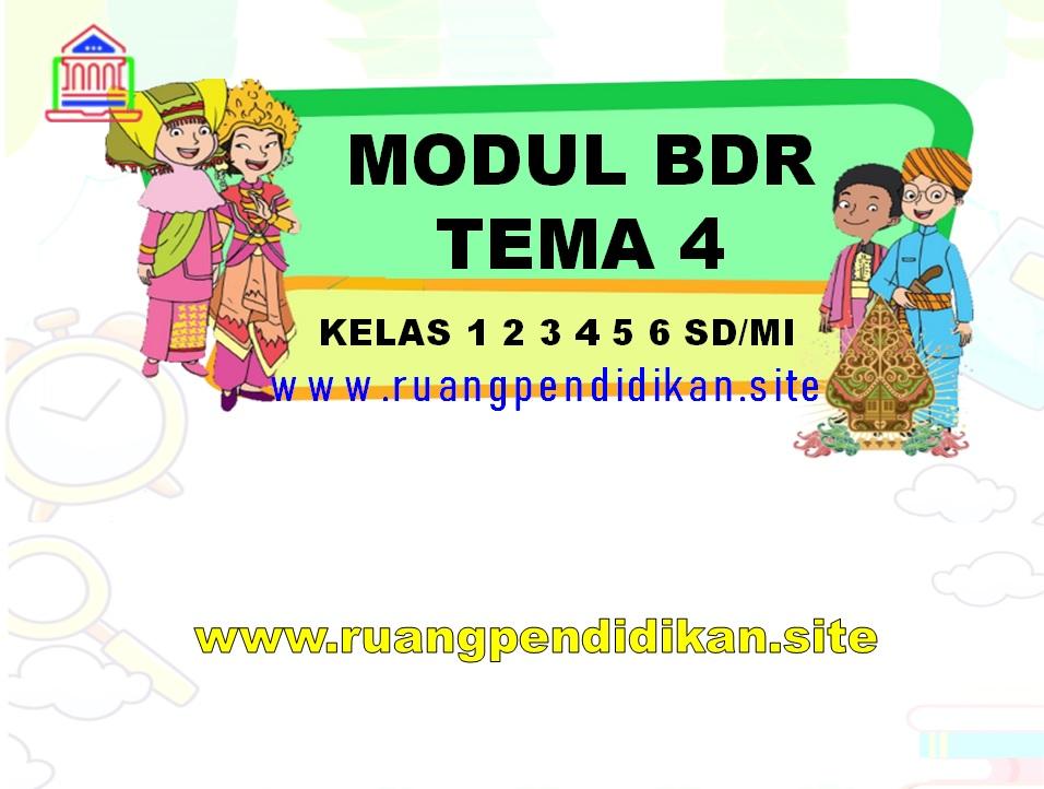 Kumpulan Modul BDR Tema 4