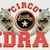 La catena di solidarietà per il Circo Medrano, continua e si consolida con l'ingresso di altre aziende salentine