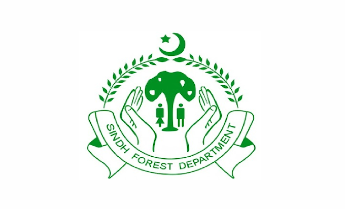 Chief Conservators Office Of Forests Sindh Jobs 2021 in Pakistan