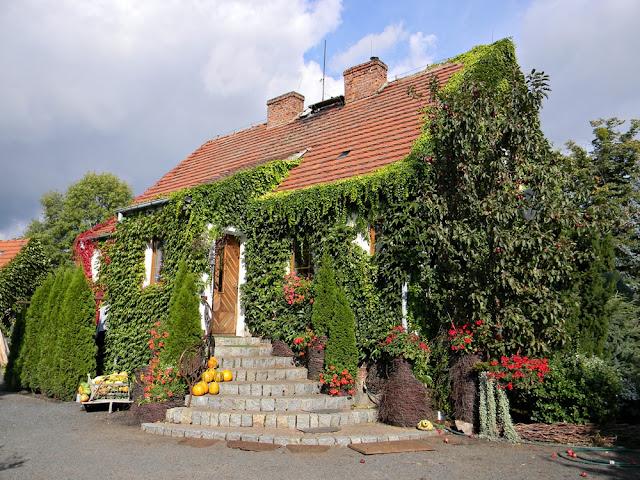Gospodarstwo ogrodnicze w Starym Dworze jest bardzo ładnie położone.