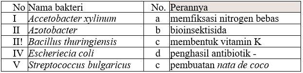 Pembahasan Soal UN Biologi 2019 Nomor 01 (Peranan Bakteri)