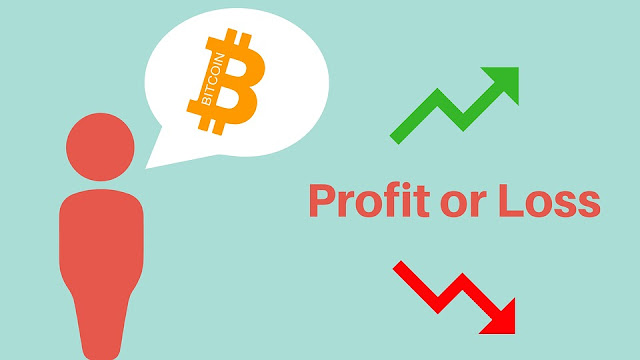 Risk theory of Profit