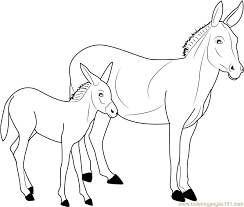 Donkey Familly Coloring Sheet At Farm