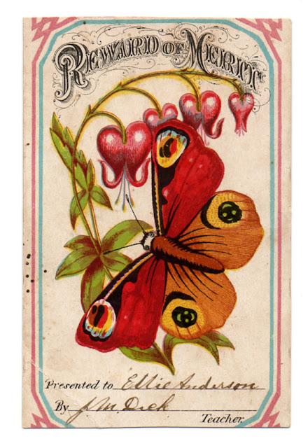 Image ancienne papillon