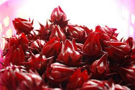 kebaikan buah roselle terhadap tubuh badan