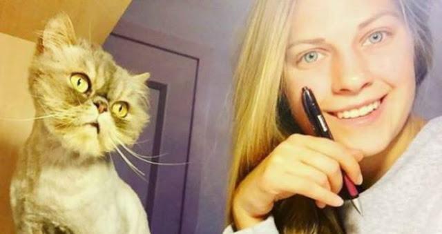 Девушка спасла 350 бездомных кошек! Фотографии малышей ДО и ПОСЛЕ встречи с новой хозяйкой…