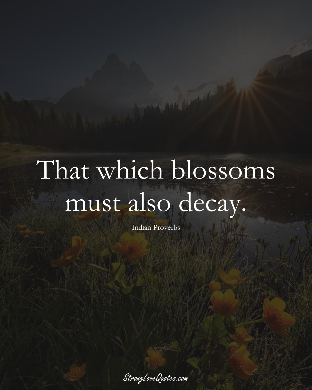That which blossoms must also decay. (Indian Sayings);  #AsianSayings