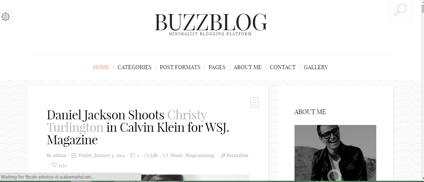 Blogbuzz-Stylish wordpress blog theme