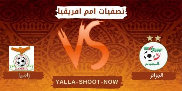 تقرير مباراة الجزائر وزامبيا تصفيات امم افريقيا