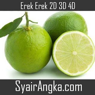 Erek Erek Jeruk Nipis 2D 3D 4D