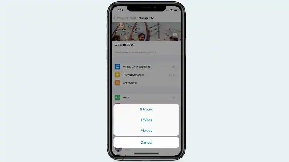 fitur-whatsapp-sekarang-memungkinkan-membungkam-obrolan-selamanya