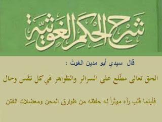 شرح الحكم الغوثية لأحمد بن مصطفى العلاوي